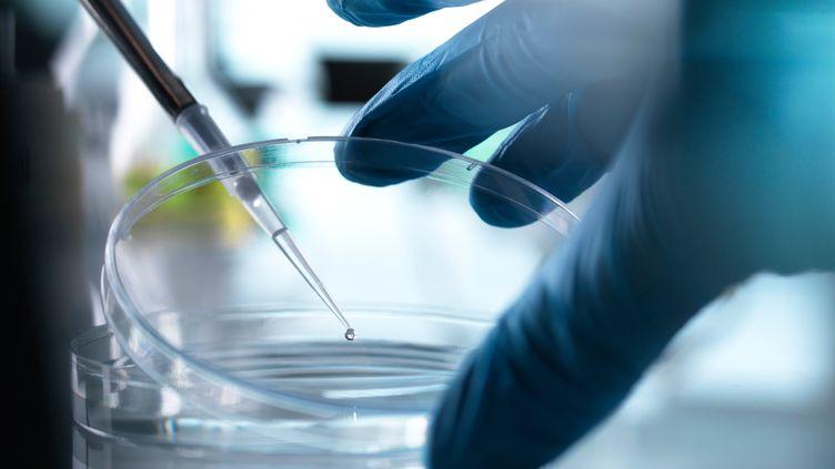 Image d'illustration d'une manipulation de laboratoire. (ANDREW BROOKES / CULTURA CREATIVE / AFP)