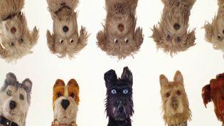 """Le dernier Wes Anderson, un film d'animation intitulé """"L'île aux chiens"""", est sorti dans les salles mercredi 11 avril. (France 3)"""