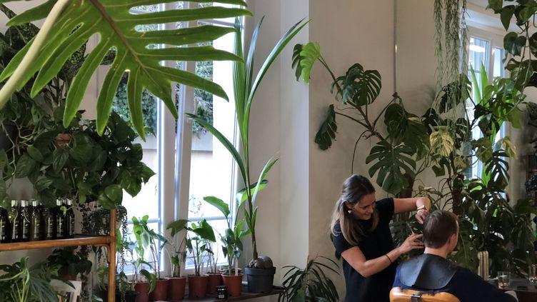 What the flower est le seul endroit en France où l'on peut se faire coiffer et acheter des plantes d'intérieur. (ISABELLE MORAND / JUSTINE JEANNIN / RADIO FRANCE / FRANCE INFO)