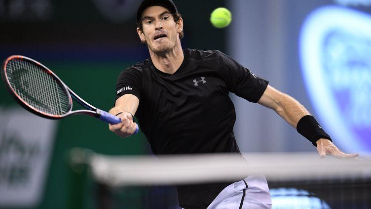 Andy Murray pose sa volée (JOHANNES EISELE / AFP)
