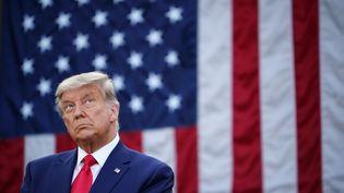 Le président américain Donald Trump,le 13 novembre 2020, à Washington (Etats-Unis). (MANDEL NGAN / AFP)