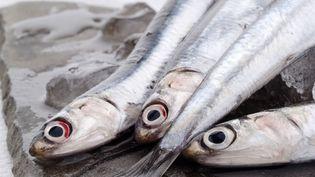 Le niveau trophique de l'homme est proche de celui d'un anchois ou d'un cochon. (ARTURO DELLE DONNE / TIPS / AFP)