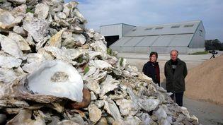 Un site de collecte de coquilles d'huîtres destinées au marquage routier, le 7 novembre 2006, à Landévant (Morbihan). (MAXPPP)
