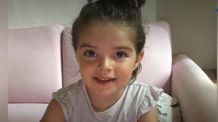 L'appel d'une mère rongée par l'inquiétude après la disparition de sa fille, âgée de trois ans et demi, il y a 17 jours. Elle soupçonne le père, son ex-compagnon, d'avoir emmené l'enfant en Italie alors qu'il en avait la garde pour le week-end. (France 3)