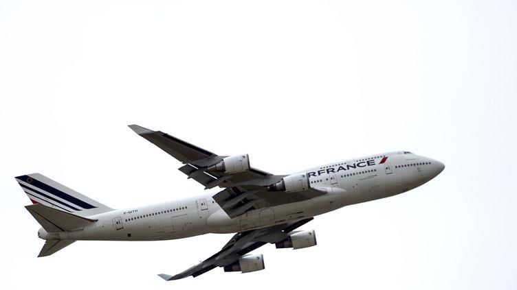 Les avions Air France survolent l'Irak pour le vol quotidien Paris-Dubaï. (FRED DUFOUR / AFP)
