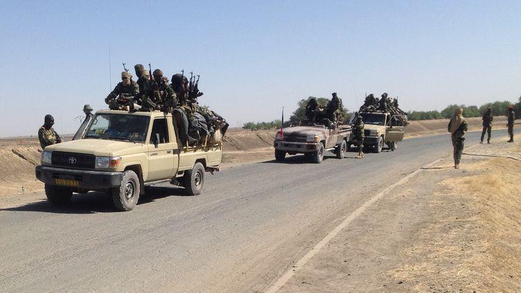 Des militaires tchadiens patrouillent le 21 janvier 2015 à la frontière entre le Nigeria et le Cameroun, à 40 km de Maltam (Cameroun). (ALI KAYA / AFP)