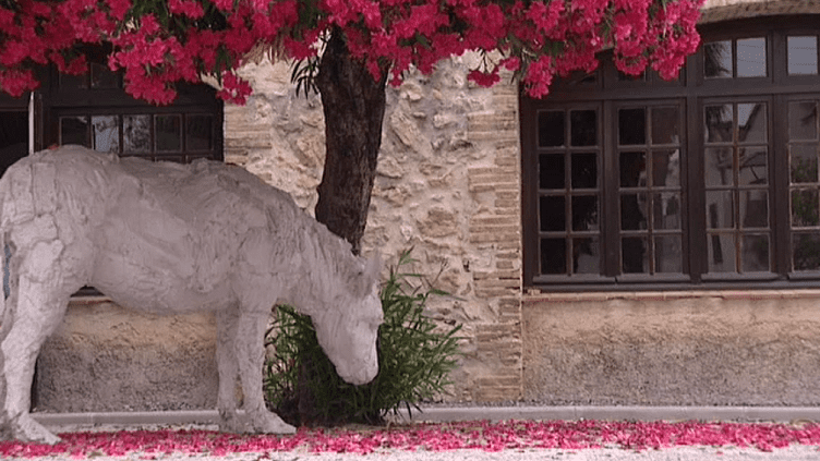 Le sculpteur italien Davide Rivala a investit la vieille ville d'Antibes avec son bestiaire insolite.  (Culturebox / Capture d'écran)