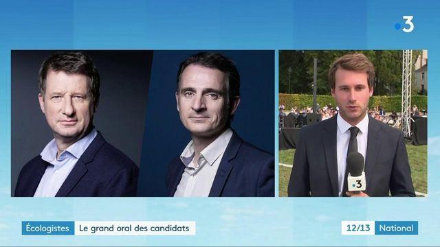 Politique : les candidats à la primaire d'EELV réunis durant l'université d'été du parti