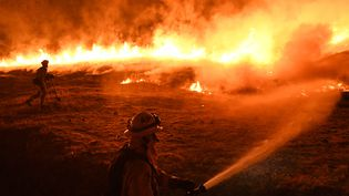 Des pompiers tentent de lutter contre contre les flammes à Upper Lake (Californie, Etats-Unis),le 2 août 2018. (MARK RALSTON / AFP)