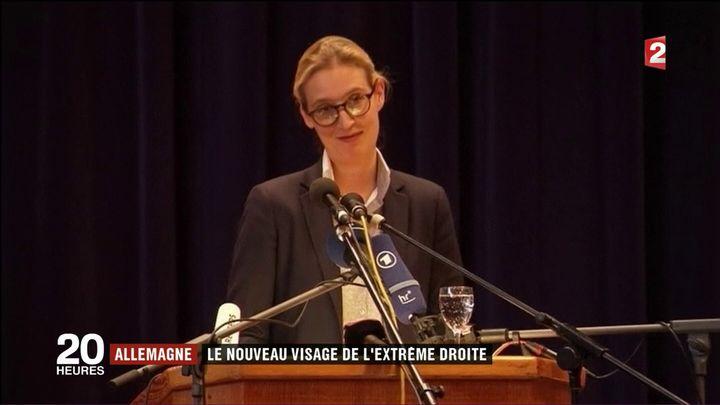 Alice Weidel (France 2)