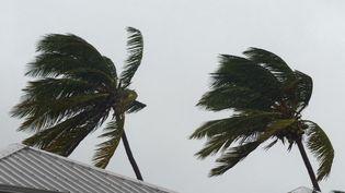 La tempête tropicale Berguitta a causé beaucoup de dégâts au sud de La Réunion, jeudi 18 janvier.  (VALERIE KOCH / SIPA)