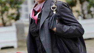 Aurélie Filippetti, ministre de la Culture, le 4 janvier 2013 à Paris. (BERTRAND GUAY / AFP)