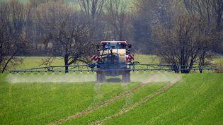 Un agriculteur répand du glyphosate sur un champ, le 30 mars 2019 près de Munich (Allemagne). (FRANKHOERMANN / SVEN SIMON / AFP)