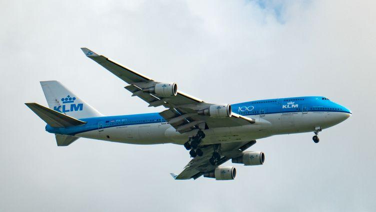 Un avion de la compagnie néerlandaise KLM s'apprêtant à atterrir à l'aéroport d'Amsterdam Schiphol, le 13 août 2019. (NICOLAS ECONOMOU / AFP)