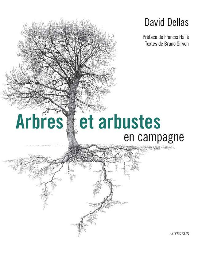 """Couverture de """"Arbres et arbustes en campagne"""", de David Dellas (dessins), préfacé par Francis Hallé (ACTES SUD)"""