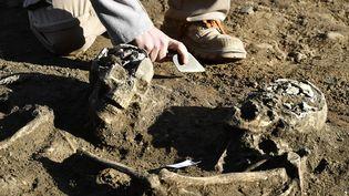 Xavier Perrot, du Bureau d'investigations archéologiques Hades, montre des restes desquelettes de la nécropole à Bordeaux (Gironde), le 6 décembre 2016. (GEORGES GOBET / AFP)