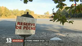 Ce lac de Lorraine est à sec, après un déficit de précipitations. (FRANCE 2)