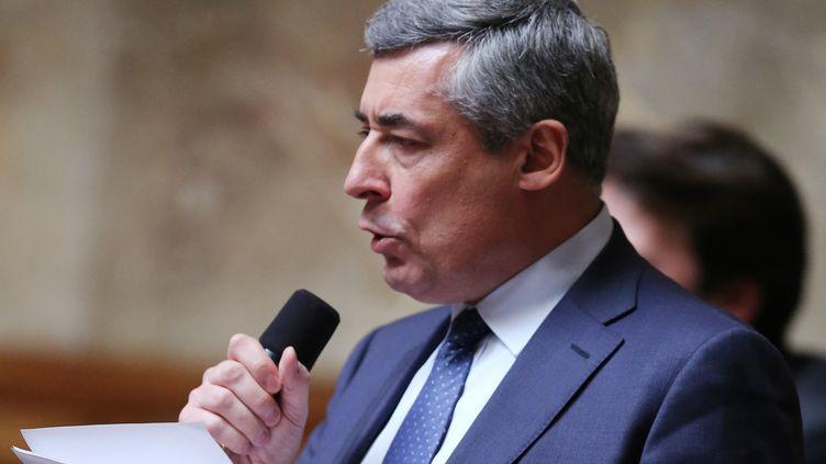 Henri Guaino , député UMP des Yvelines, le 2 avril 2013 à l'Assemblée nationale à Paris. (PIERRE VERDY / AFP)