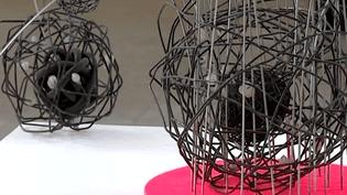 La collection de Philippe Delaunay au Musée des Beaux-Arts de Bernay  (France3/culturebox)