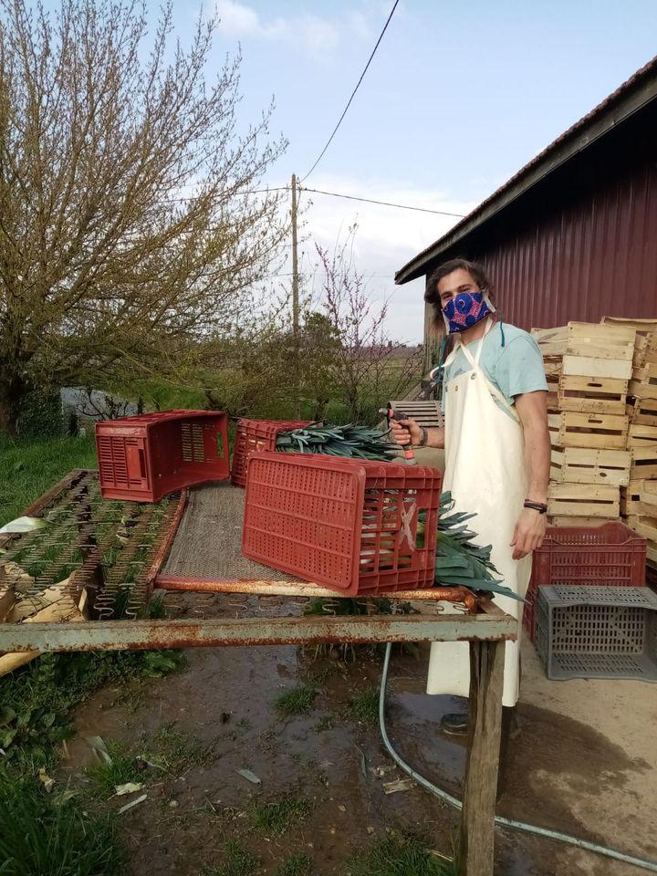 Raphaël, l'une des personnes travaillant dans l'exploitation de Marie, lave des légumes en portant un masque, le 23 mars 2020. (MARIE / FRANCEINFO)