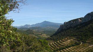 Le mont Ventoux devient, avec la Baie de Somme, un parc naturel régional. (AURÉLIE LAGAIN / FRANCE-BLEU BREIZH IZEL)