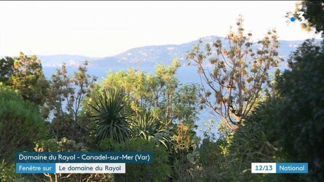 Var : le voyage en méditerranée dans le domaine du Rayol