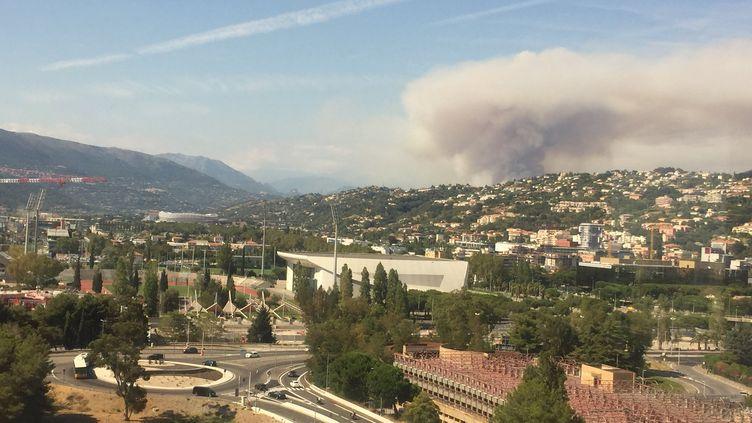 Le feu s'est déclaré vers 15h, lundi 17 août, àCastagniers (Alpes-Maritimes). (Préfecture des Alpes Maritimes - Twitter)