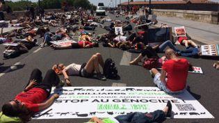 Des manifestants se couchent sur la chaussée à Toulouse, le 27 mai 2017, pour demander la fermeture des abattoirs. (FRANCE 3 OCCITANIE)