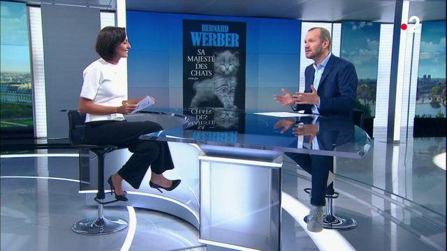"""Culture : dans """"Sa majesté des chats"""", Bernard Werber tente de percer le secret de nos amis félins"""