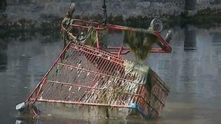 Un caddie extrait de la rivière grâce à la pêche à l'aimant, dans les Deux-Sèvres. (FRANCE 3)