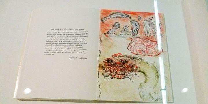 Neuf lithographie de Hugues Weiss illustrent le livre d'Harry Matthews  (Odile Morain)