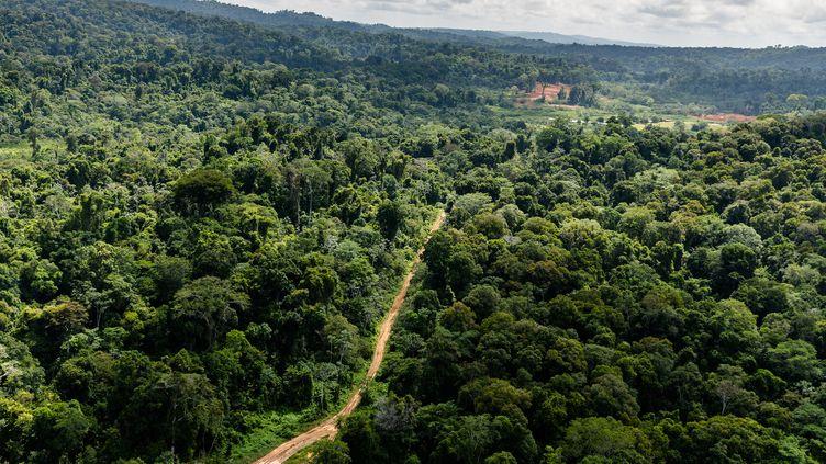 """Vue aérienne de la piste d'atterrissage Paul Isnard près du camp de base de la """"Montagne d'or"""". (JODY AMIET / AFP)"""