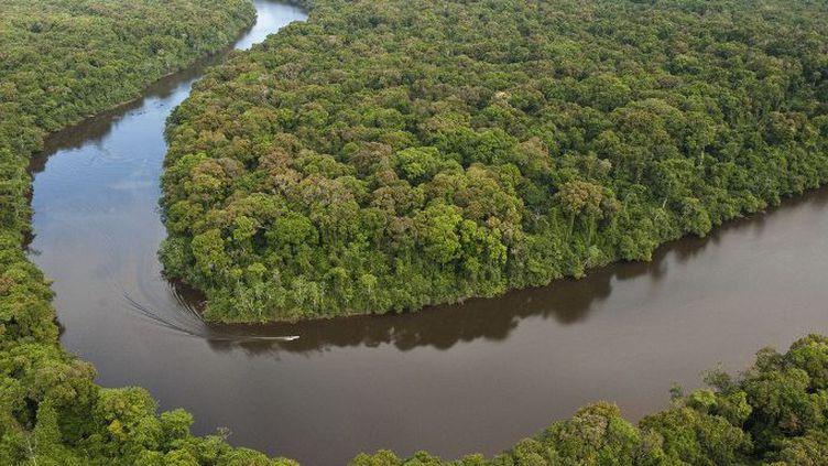 Le fleuve Essequibo au Guyana. (Biosphoto / Minden Pictures / Pete Oxford)