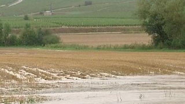 Orages dans le sud-ouest : des routes inondées et des vignes ravagées