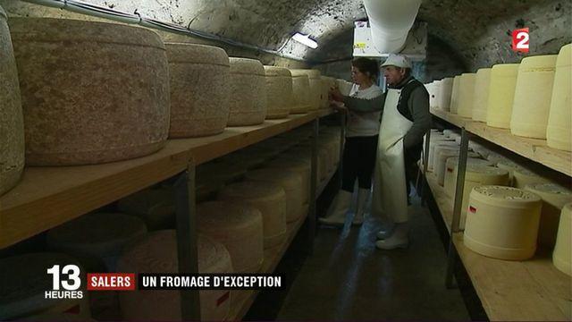 Salers : un fromage d'exception