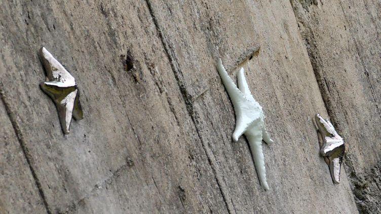 300 étoiles émaillées vont recouvrir le barrage de Saint Etienne-Cantalès dans le Cantal (France 3 Aura)
