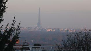 La ville de Paris, lors d'un pic de pollution, le 15 décembre 2016. (OLIVIER BOITET / MAXPPP)