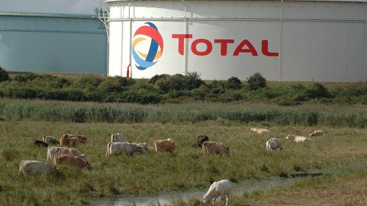 Citernes de l'entreprise Total, à la raffinerie de Donges, près de Saint-Nazaire, en octobre 2013. (VILLALON RICHARD / MAXPPP)