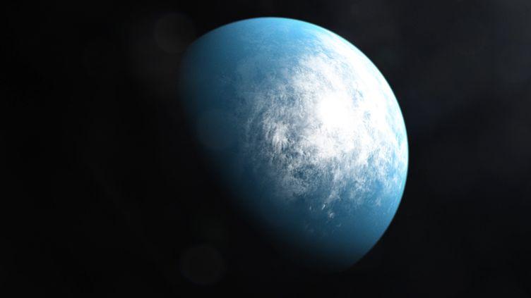 """Une illustration diffusée par la Nasa le 6 janvier 2020, imaginée à partir d'une simulation de l'étoileTOI 700 d, nouvelle planètede la taille de la Terre découverte dans une """"zone habitable"""". (NASA / AFP)"""