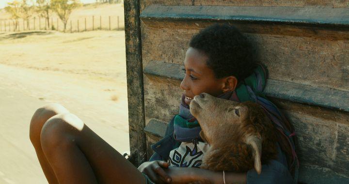 """Le film """"Lamb"""" de Yared Zeleke, sélectionné à Cannes dans la section """"Un certain regard"""".  (Allo CIné /Yared Zeleke)"""