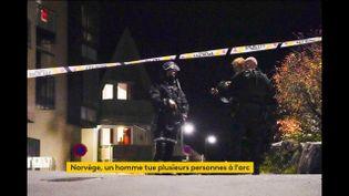 Des policiers à Kongsberg (Norvège) (FRANCEINFO)