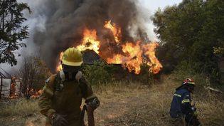 Des pompiers luttent contre un feu à Patras en Grèce, le 31 juillet 2021. (ANDREAS ALEXOPOULOS / AP /SIPA)