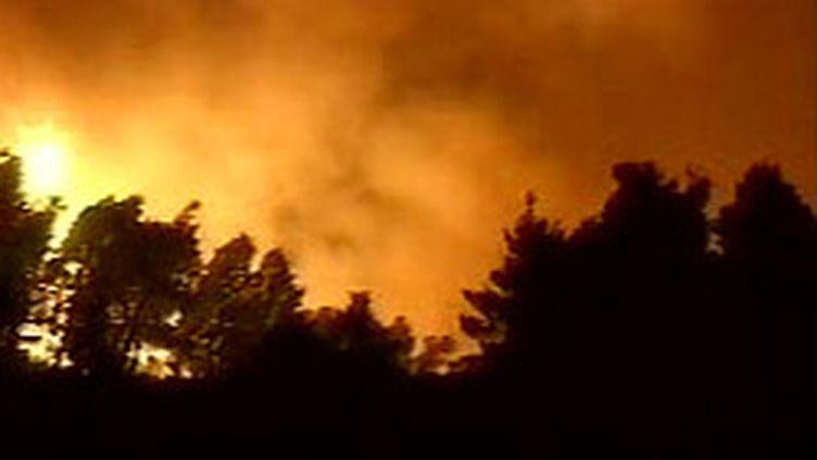 Incendie au nord-est de la Grèce (archives). (France 2 (22-8-2006))