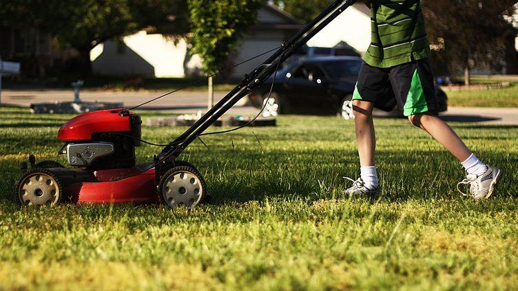Depuis le lundi 1er juillet, les travaux d'entreprises de jardinage sont frappés par une TVA de 19,6%, contre 7% auparavant. (CHRIS WARD / FLICKR / GETTY IMAGES)