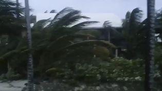 L'ouragan Dorian a balayé les Bahamas, dimanche 1er septembre, faisant au moins 5 morts (RICH ROBERTS / AFP)