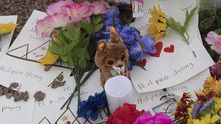Des messages et des fleurs ont été déposés devant le centre commercial d'El Paso (Texas), où vingt personnes ont été tuées, le 4 août 2019. (MARK RALSTON / AFP)