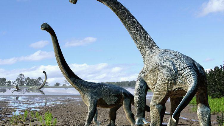 Une représentation de la nouvelle espèce de dinosaureSavannasaurus elliottorum, réalisée le 20 octobre 2016 par un artiste. (TRAVIS TISCHLER / NATURE PUBLISHING GROUP / AFP)