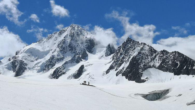 L'Aiguille du Chardonnet (3 824 m) dans le massif du Mont-Blanc. (LIONEL CARIOU / RADIO FRANCE)