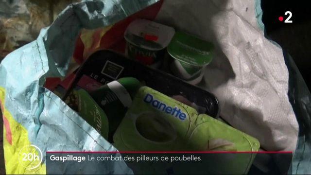 Gaspillage alimentaire : le combat des pilleurs de poubelles