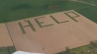 En Indre-et-Loire, un agriculteur a décidé de dénoncer de manière spectaculaire la situation de sa profession. Il a écrit un message de détresse dans l'une de ses parcelles. (France 3)